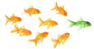 How to improve leadership skills