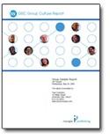 disc-classic-group-culture-report.jpg