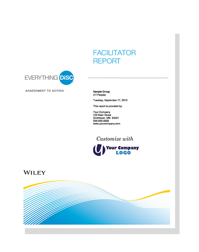 everything-disc-facilitator-report.png